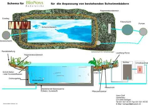 Moceniga 2010 architettura e composizione 2 corso marina montuori laboratorio prof - Biopiscina fai da te ...